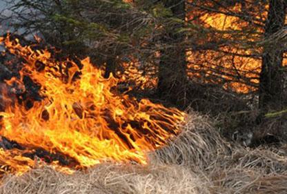 Eldning avråds på grund av stor brandfara