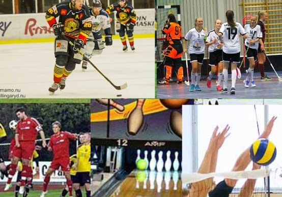 Regeringen stärker idrottens arbete med föreningsdemokrati