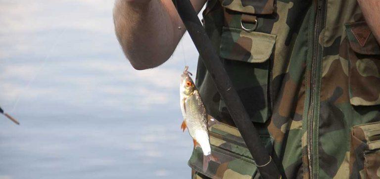 Tjuvfiskare i Kalvsjön fällda
