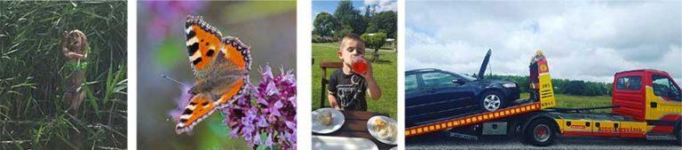Sommartävlingen: Flera läsarbilder