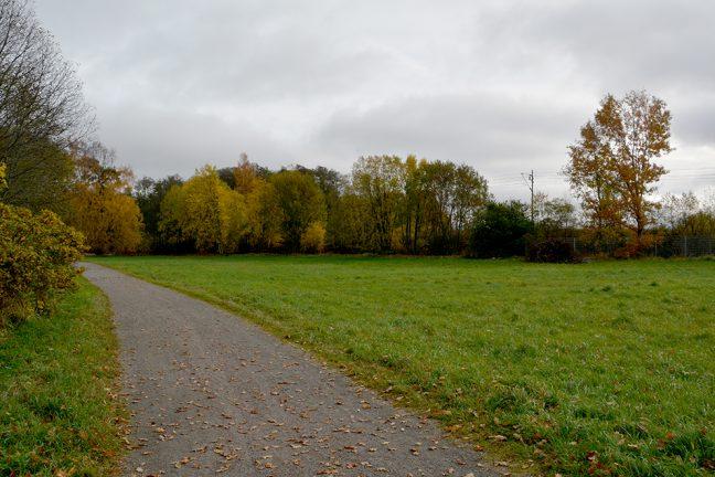 Tekniska förvaltningen vill utveckla Karlsdals grönområde
