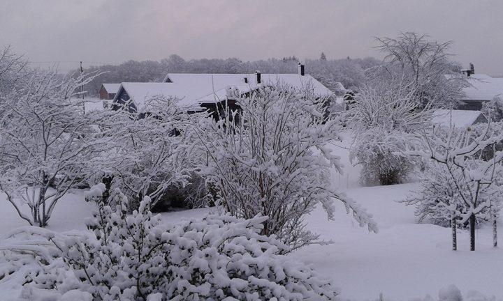 Fler häftiga vinterbilder