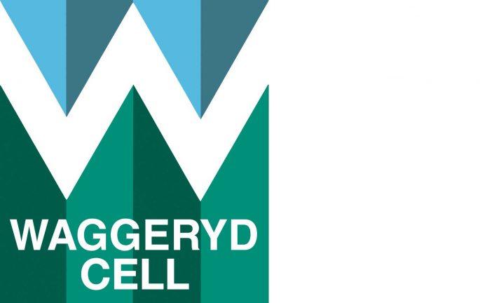 Waggeryd Cell söker industrielektriker