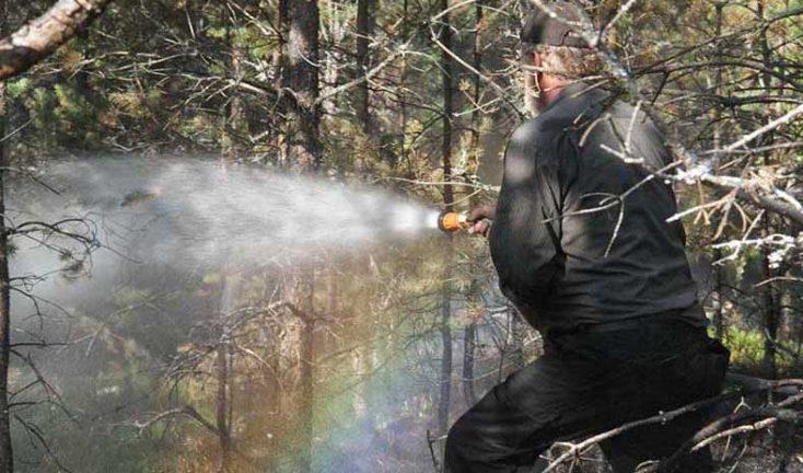 Eldningsförbud infört i grannlän