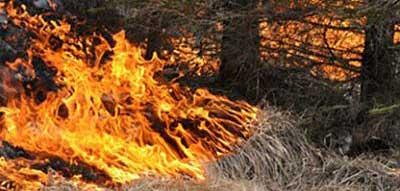 Risk för skogsbränder