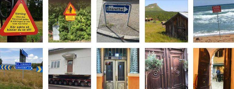 Fler bilder i sommartävlingen – 101–110