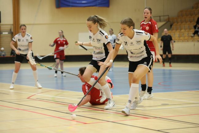 Bildextra: VIK-damerna vann mot Östra