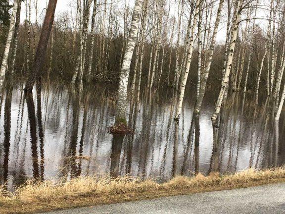 Fler läsarbilder från översvämningarna