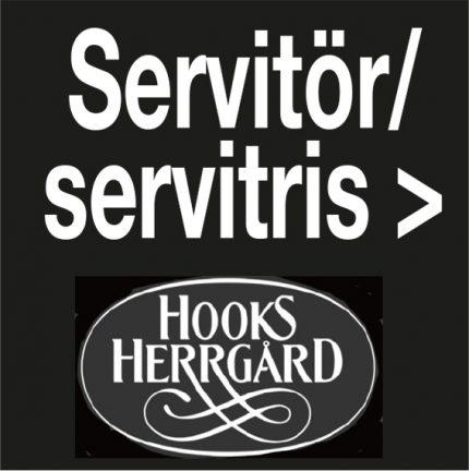 Servitör – servitris