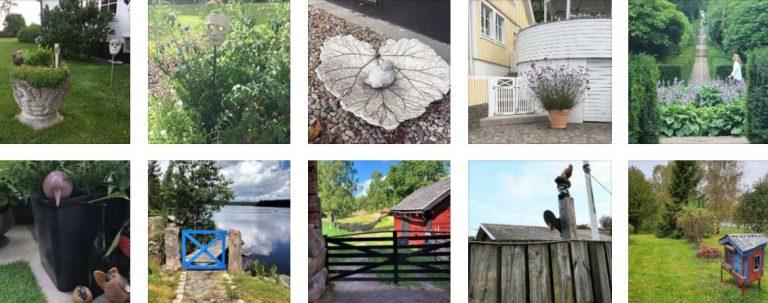 Sommartävlingen: Bilder 161–170